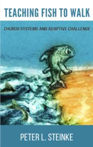 teaching-fish-to-walk-peter-steinke